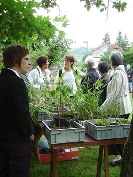 troc-jardin