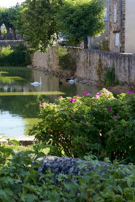 rdv-jardins-sauveterre2