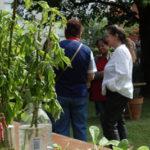 vignette-troc-jardin-2019a