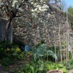 vignette-rdv-jardins-najac-2019